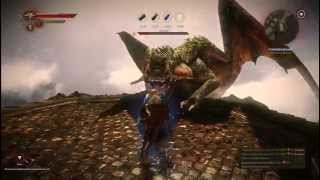 The Witcher 2 Дракон ( безумный уровень сложности )