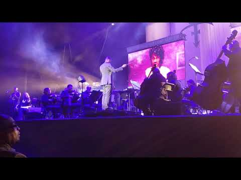 When Doves Cry/Little Red Corvette - Prince Tribute by Dallas Symphony Orchestra