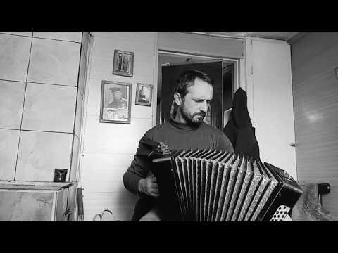 """""""Песня о погибшем лётчике"""" под гармонь. (В. Высоцкий)"""