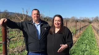 Napa couple works at local, state levels for agriculture