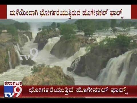 Hogenakkal Falls in Chamarajanagar District Glowing Full Bloom | Attracting Tourists