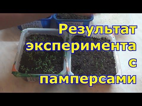 Вопрос: Можно использовать памперсы для выращивания растений?