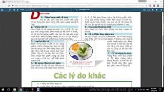 Tập 23: WORD Đề 4 Tô màu cho Paragap - Chứng chỉ ứng dụng CNTT cơ bản