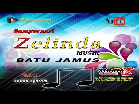 LIVE ZELINDA//STUDIO X MULTIMEDIA//IDEAL sound