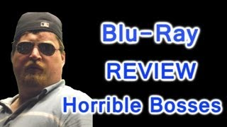Horrible Bosses Totally Inappropriate Edition Review