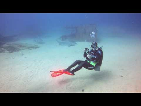 Cabo Pulmo Bull Shark Diving