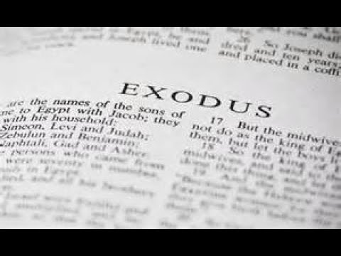 Exodus 27 Daily Bible Reading with Paul Nison