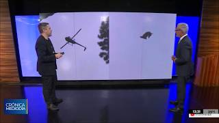 La Justicia uruguaya busca el helicóptero desde el que arrojaron un cerdo a una pileta