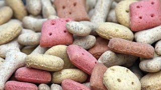 biscoito de cenoura caseiro para cachorronaturalsaúdavel veja os benefícios