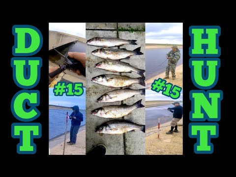California Aqueduct Striper Fishing May 2020 W/DaHomies