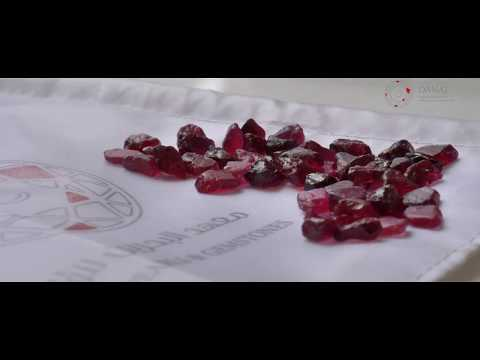 Conservation Gemstones - Mozambique