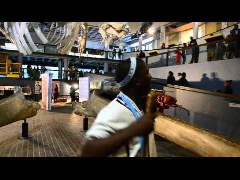 Ndyebo Krila Mxhelomnyama - at Iziko South African Museum on Heritage Day filmed - by Wandile Kasibe
