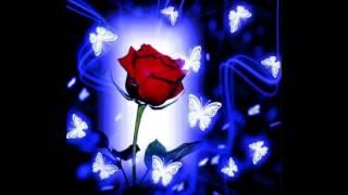 ruusuja hopeamaljassa
