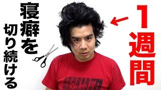 【検証】1週間寝癖を切り続けたらどんな髪型になるの!?