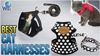 9 Best Cat Harnesses 2018 thumbnail