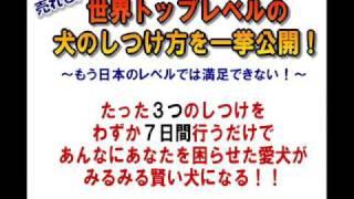 詳しくはコチラ→ http://www.infotop.jp/click.php?aid=152745&iid=2551...