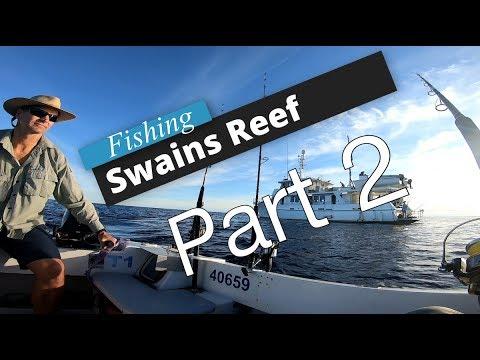 Pelagic Fishing At Swains Reefs- Great Barrier Reef