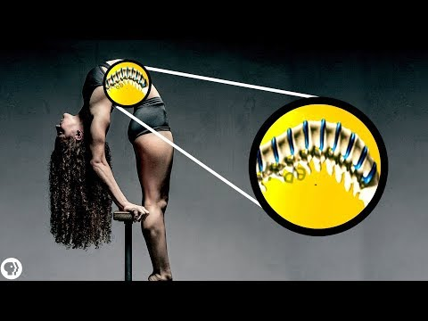 What stretching actually does to your body ft. Sofie Dossi