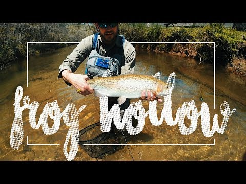Fly Fishing In North Georgia For MONSTER TROUT!