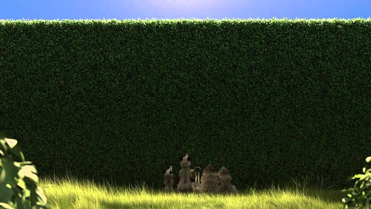 Over the hedge clip - YouTube