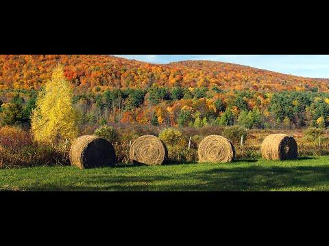 Berkshire County MA - Real Estate Community Profile