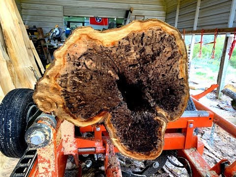 You Have To See What Is Inside This Apple Log