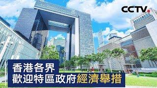 香港各界欢迎特区政府经济举措 | CCTV