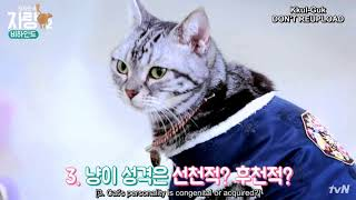 [ENG] Kim Yongguk - Cat Butler's Brag S2 BEHIND EP. 10