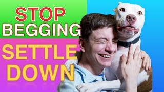 How to Teach your Dog to STOP BEGGING \u0026 SETTLE DOWN Right now!