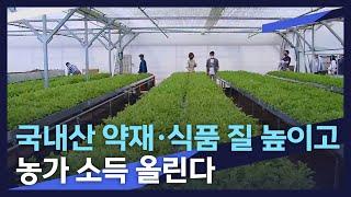 [뉴스데스크] 국내산 약재,식품 질 높이고 농가 소득 올린다