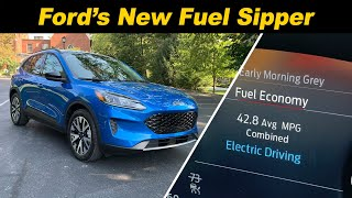 2020 Ford Escape Hybrid  Watch Out RAV4!