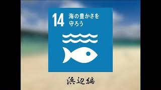 SDGs  〜海の豊かさを守ろう〜
