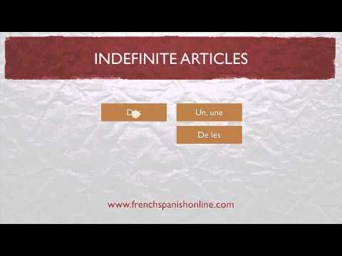 indefinite articles in french, un, une, des