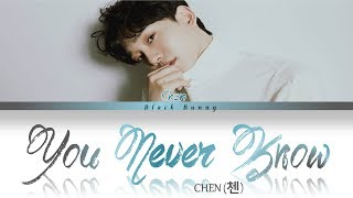CHEN (첸) - You Never Know (Color Coded Lyrics Han/Rom/Eng/가사)