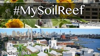 World's Largest Rooftop Farm Uses Soil Reef Biochar - Brooklyn Grange Organic Farm