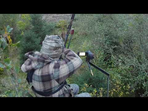One Arrow Confidence Shot! Traditional Bowhunting Tips!