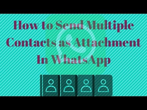 How to Send Multiple Contacts on WhatsApp at once - YouTube