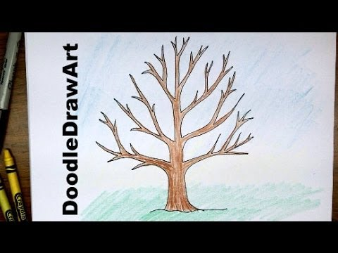 How to draw a tree without leaves easy drawing tutorial for beginners youtube