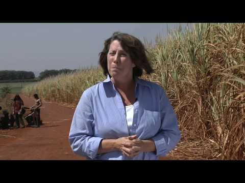 Brazil pioneers energy independence with ethanol