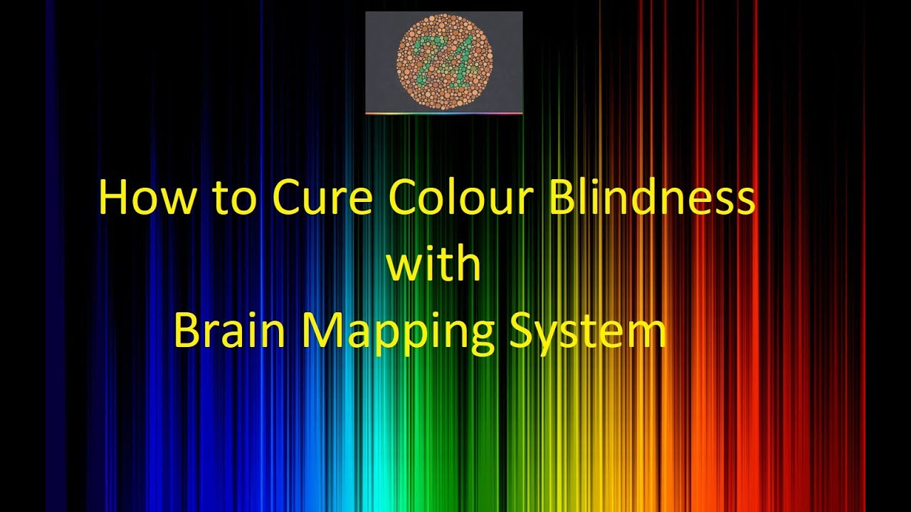 Book for color blindness - Treatment For Colour Blindness Guaranteed To Read Ishihara Test Chart 38 Plates