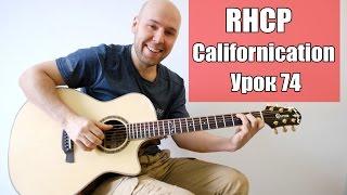 Californication - RHCP Разбор Фингерстайл (Урок 74)