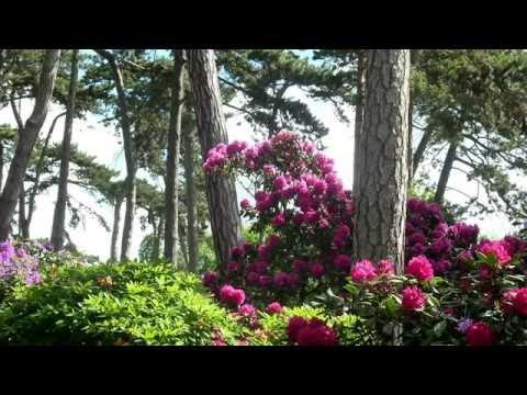 Aulnaysiens au parc floral de Paris