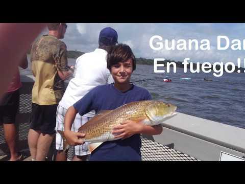 Guana Dam Fishing - Redfish For Everyone!