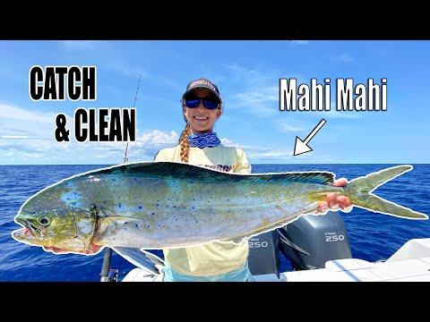CATCH & CLEAN MAHI MAHI - How To Catch Mahi (dolphin) | Gale Force Twins