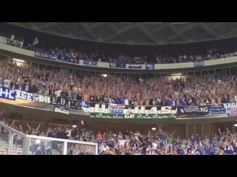Schalke Nizza