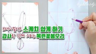 [보태니컬아트] 목련 꽃 봉오리 스케치 쉽게 그리는 방…