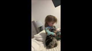 Adorable Puppy Goes to Little Baby to Snuggle and Get Hugged