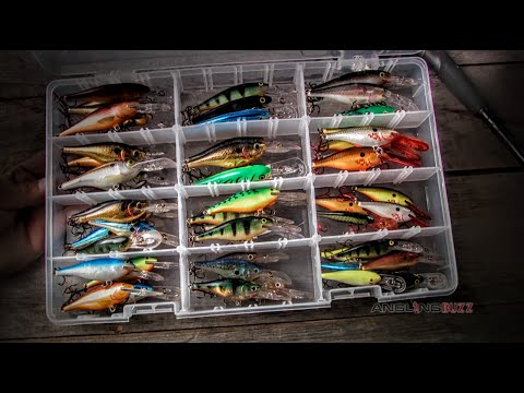 Flat-Sided Crankbaits for Cold-Water Bass - YouTube