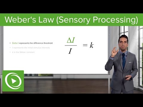 Weber´s Law (Sensory Processing): Proportion & Examples – Sensing the Environment | Lecturio