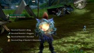 Kingdoms of Amalur:Reckoning Gameplay[PC]